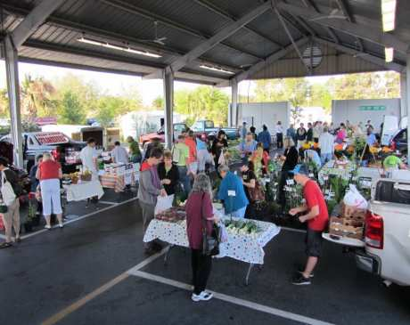 The 10 Best Farmers Markets in Florida!