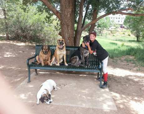 The 10 Best Dog Parks in Colorado!