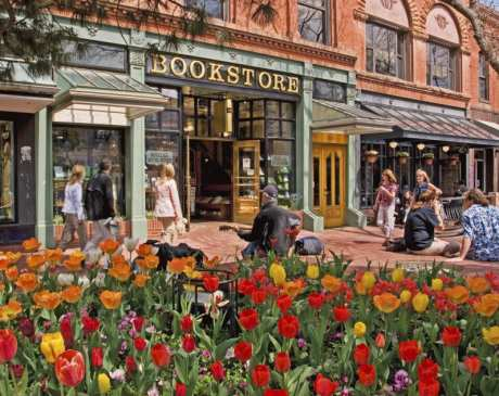 The 10 Best Bookstores in Colorado!