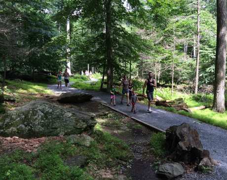 The 15 Best Hiking Trails in Maryland!