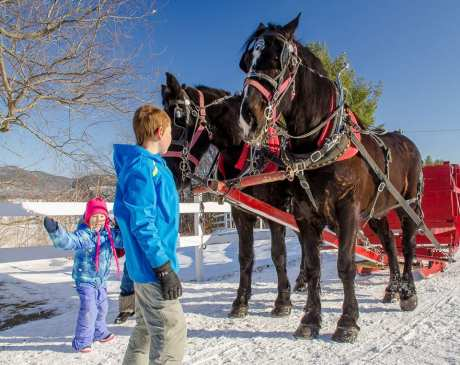 The 15 Best Winter Activities to Do in New Hampshire!