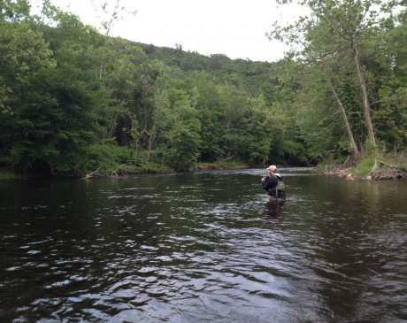 The 7 Best Fly Fishing Spots in Connecticut!