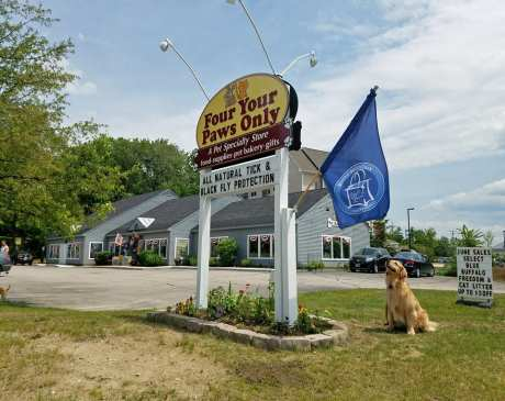 The 10 Best Pet Stores in New Hampshire!