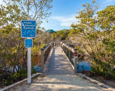 The 15 Best Hiking Trails in Florida!