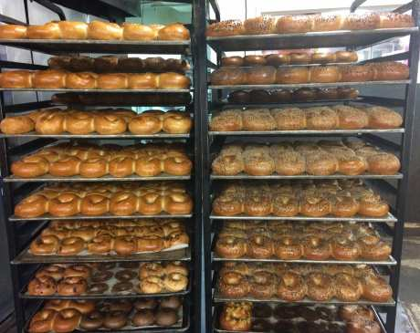 The 10 Best Bagel Shops in New York!