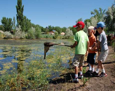 The 10 Best Nature Centers in Utah!