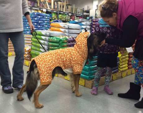 The 10 Best Pet Stores in Vermont!