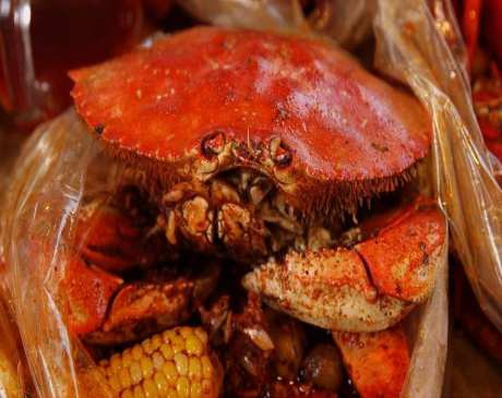 The 10 Best Places for Crab in Massachusetts!