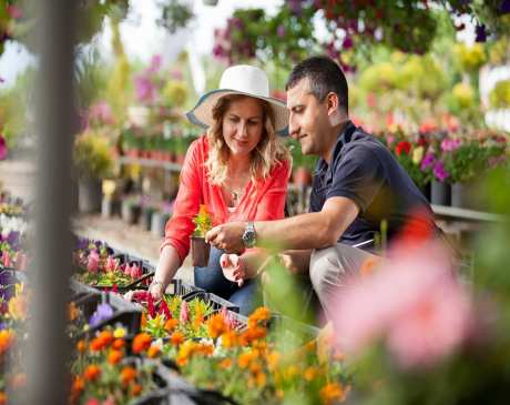 The 10 Best Garden Centers and Nurseries in Indiana!