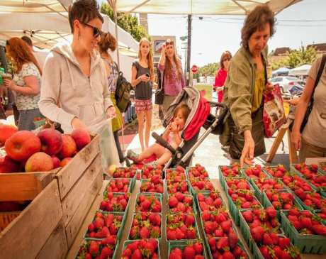 The 10 Best Farmers Markets in Maryland!