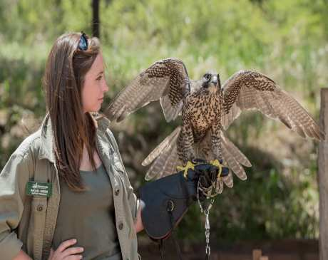 The 10 Best Nature Centers in Arizona!
