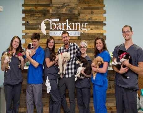 The 10 Best Pet Boutiques in Michigan!
