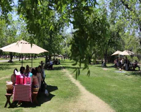 The 15 Best Picnic Spots in Arizona!