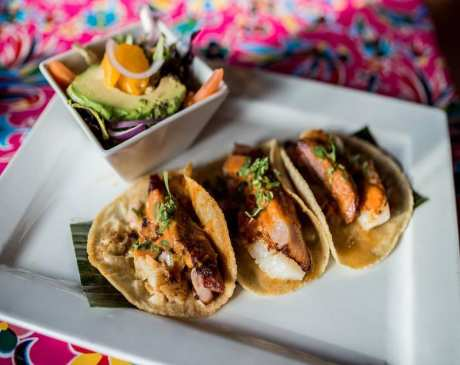 The 10 Best Taco Places in North Carolina!