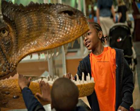 The 10 Best Science Centers in Michigan!