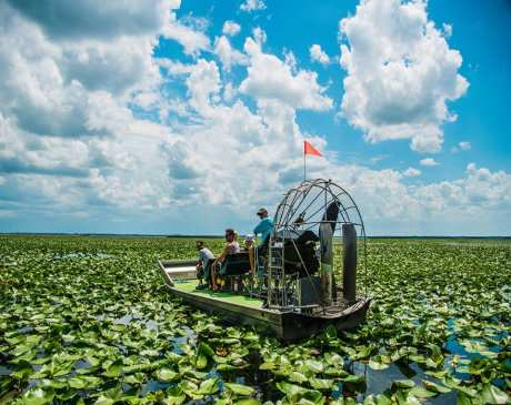 The 10 Best Guided Tours in Florida!