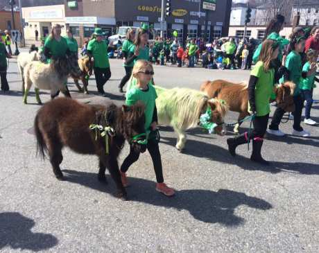 The 15 Best Places to Celebrate St. Patrick's Day in Massachusetts!