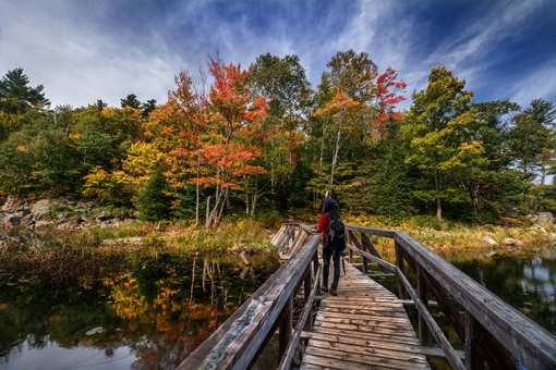 14 of the Best Fall Activities across Alabama!