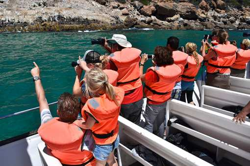 The 10 Best Boat Tours in Arizona!