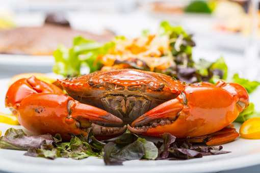 The 10 Best Places for Crab in California!