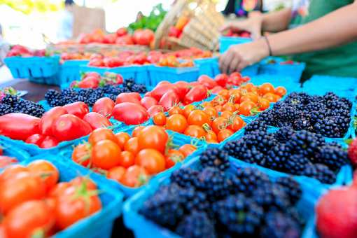 The 10 Best Farmers Markets in Connecticut!