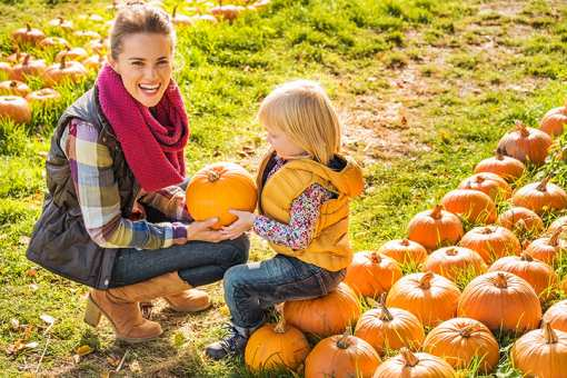 The 9 Best Pumpkin Patches in Delaware!