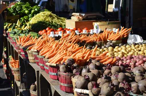The 10 Best Markets in Florida!