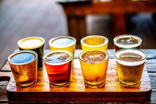 The 10 Best Breweries in Illinois!