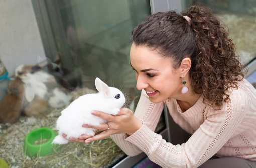 The 10 Best Pet Stores in Illinois!