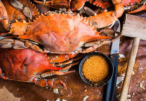 The 10 Best Places for Crab in Maryland!