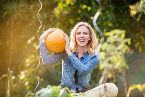 The 10 Best Pumpkin Patches in Maine!