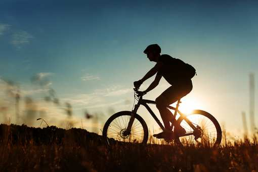 The 10 Best Mountain Biking Trails in New Hampshire!