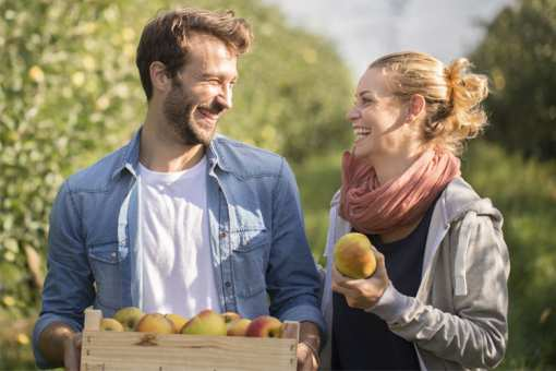 The 10 Best Apple Picking Spots in Ohio!