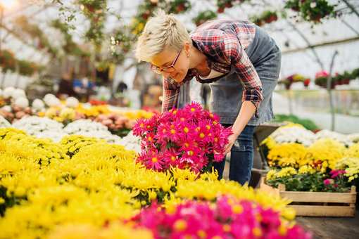 The 11 Best Garden Centers and Nurseries in Oklahoma!