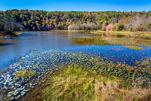The 10 Best State Parks in Oklahoma!