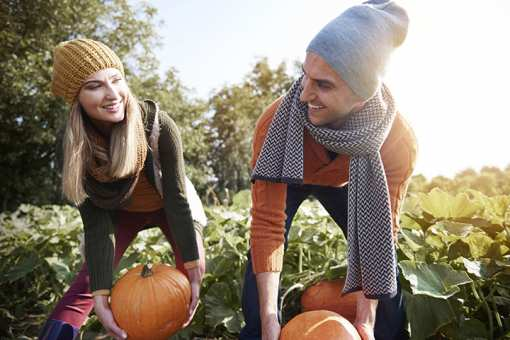 The 10 Best Pumpkin Patches in Oregon!