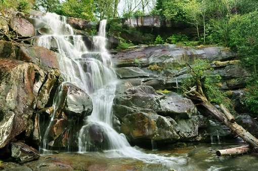 The 15 Best Hiking Trails in Tennessee!