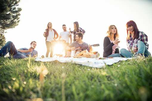 The 14 Best Picnic Spots in Virginia!