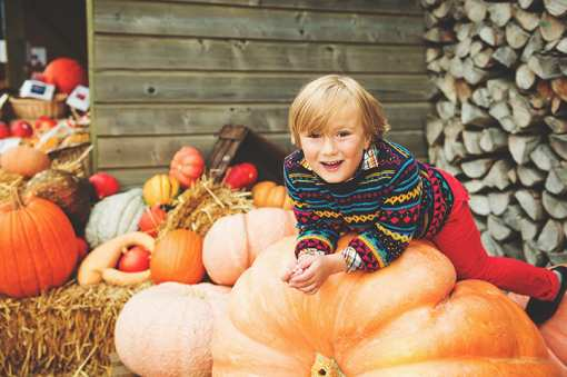 The 10 Best Fall Festivals in Washington State!