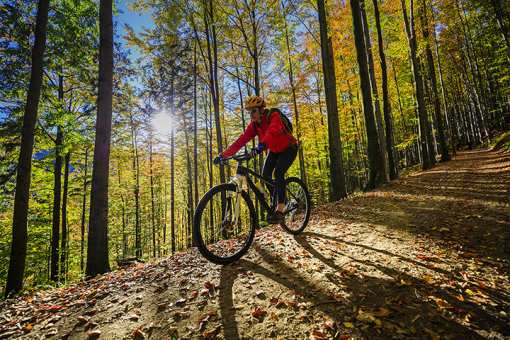 The 10 Best Bike Shops in Wyoming!